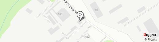 Алина на карте Сертолово