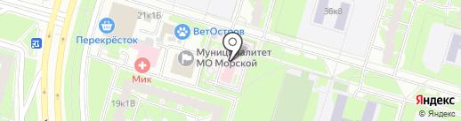 Городская поликлиника №4 на карте Санкт-Петербурга