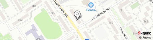 Пингвин на карте Сертолово
