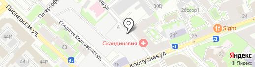 Рено на Петроградской на карте Санкт-Петербурга