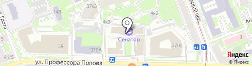 Невская строительная компания на карте Санкт-Петербурга