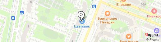 Цветовик на карте Мурино