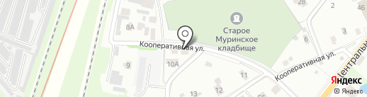 Scopum на карте Мурино
