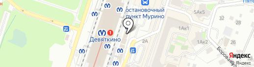 Элекснет на карте Мурино