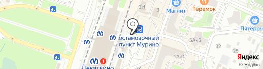 Аптека на карте Мурино