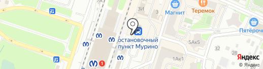 Цифросити на карте Мурино