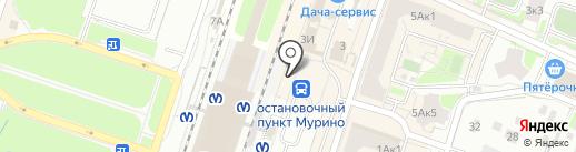 Rudetali.ru на карте Мурино