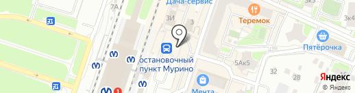 PhotoCopy на карте Мурино