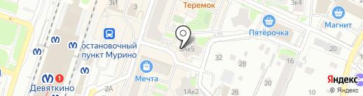 Gadget Clinic на карте Мурино