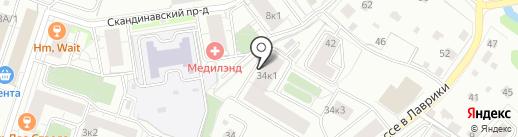 Стоматология на ул. Шоссе в Лаврики на карте Мурино