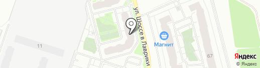 Пингвин на карте Мурино