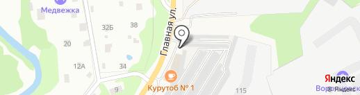 Автомойка на Заречной на карте Нового Девяткино