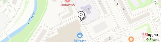 2 Stvola на карте Нового Девяткино