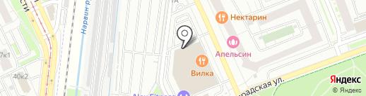 Магазин разливного пива на карте Кудрово