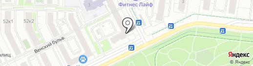 Стрижи на карте Кудрово