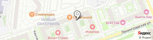БиоЛайф-Экспресс на карте Кудрово