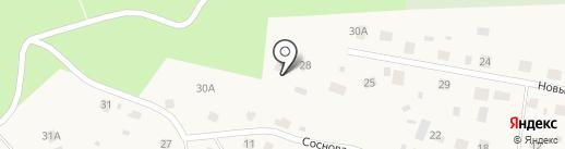 Новый Век на карте Токсово