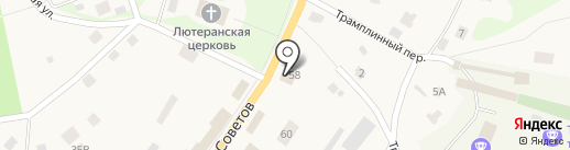 Две козы на карте Токсово