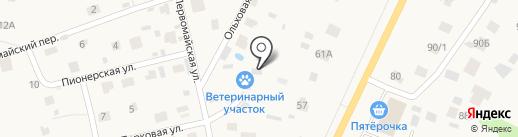Токсовский ветеринарный участок на карте Токсово