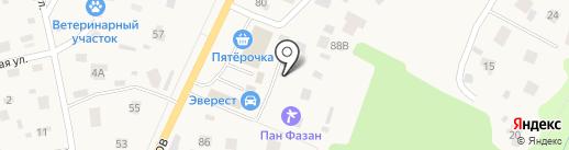 Метрика на карте Токсово