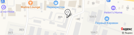 Fishorder.ru на карте Янино 1