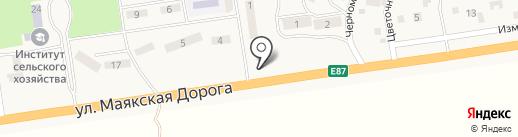 Золотой карп на карте Хлебодарского