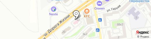 Линия Жизни на карте Всеволожска