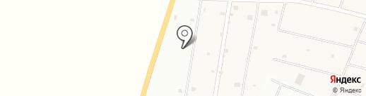 Грибочек на карте Молодёжного