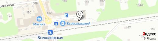 Магазин спортивных и рыболовных товаров на карте Всеволожска