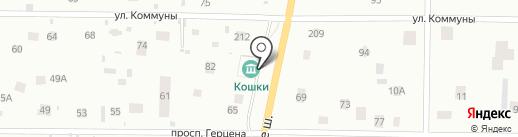 Музей кошки на карте Всеволожска