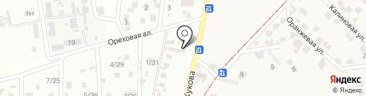 Автосервис на Овидиопольской (Червоный Хутор) на карте Мизикевичи
