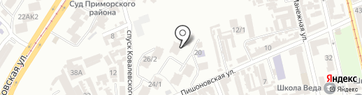 Белый медведь на карте Одессы
