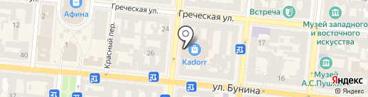 Шиншилла на карте Одессы