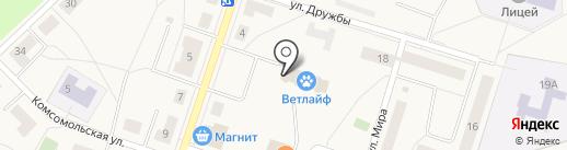 ВетЛайф на карте Отрадного