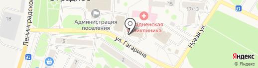 Гостиница в Отрадном на карте Отрадного