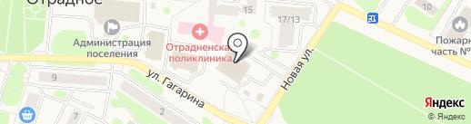 Ленфарм на карте Отрадного