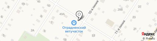 Ветеринарная клиника на карте Отрадного