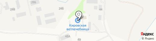 Станция по борьбе с болезнями животных Кировского и Тосненского районов на карте Кировска