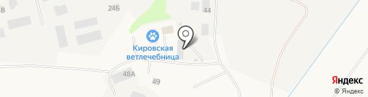 Мятый элемент на карте Кировска
