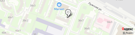 Феникс на карте Великого Новгорода