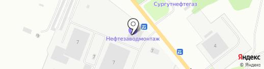 Бакаут на карте Великого Новгорода