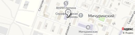 Столовая на карте Мичуринского