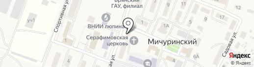 Семь-Я на карте Мичуринского