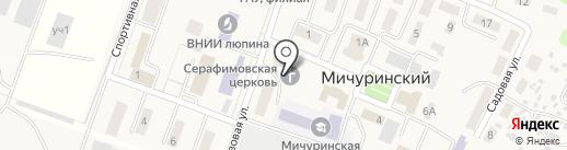 Храм во имя преподобного Серафима Саровского на карте Мичуринского