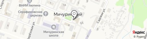 Дом культуры на карте Мичуринского