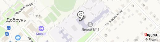Лицей №1 Брянского района на карте Добруня