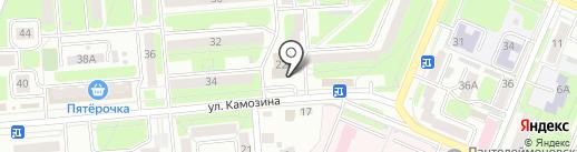 Умницы и умники на карте Брянска