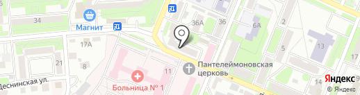 Эвкалипт на карте Брянска