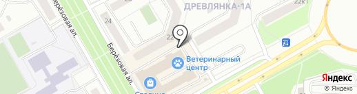 AutoMarket на карте Петрозаводска