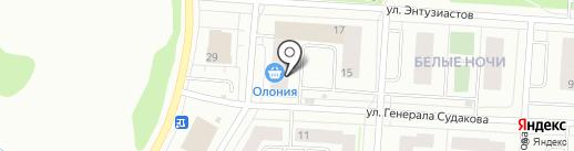 Северный народ на карте Петрозаводска
